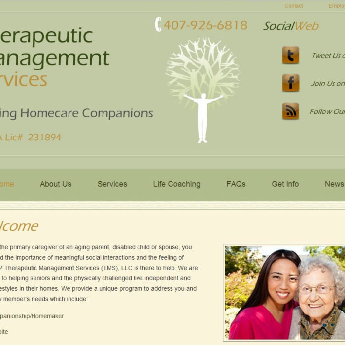 Therapeutic Management Services